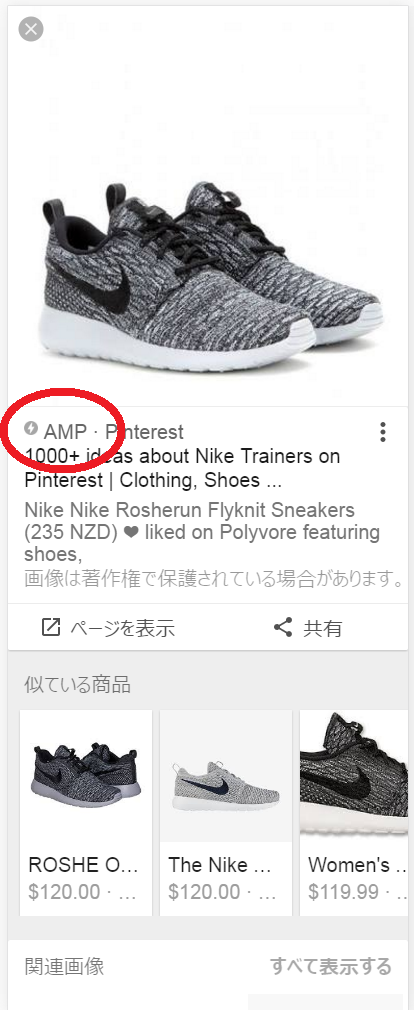 AMP Label in Image Search SERPs